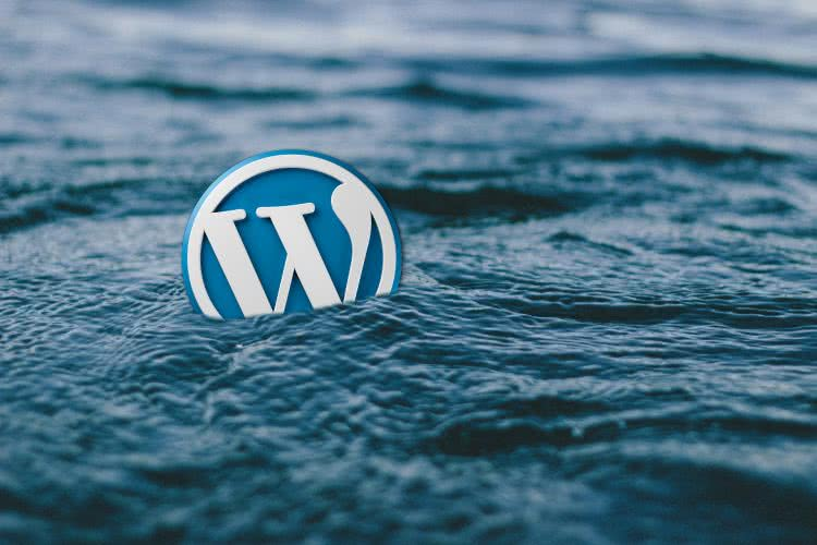 WordPress Login 2019 or How To Keep Your Site Safe